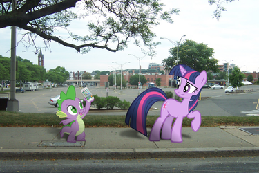 Twilight Sparkle and Spike, Library Hunting by pizzalover53