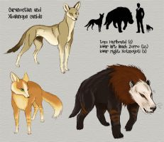 Caranoctian canids by Viergacht