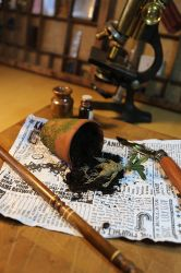 Harry Potter - Herbology for Beginners (a) by pocko-85