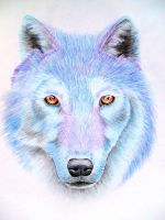 Snow Wolf by x----eLLiE----x