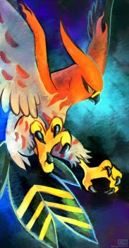 Talonflame by Haychel