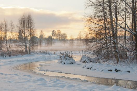 Winter at the river by RavensLane