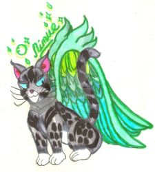 Hoopoe Angel Cat Nimue by Winter-Colorful