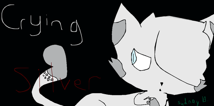 Crying Silver Cover by DonatelloHamatoTACOZ