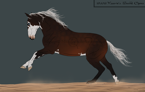 SOLD - SWS Xevoria's Second Chance by chelissima
