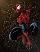 Spider Man colored by Niggaz4life