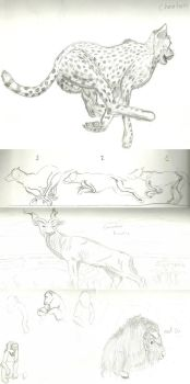 Animal Sketches #2 by ArousingSoul