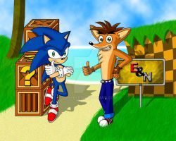 Sonic and Crash by DrSpeed