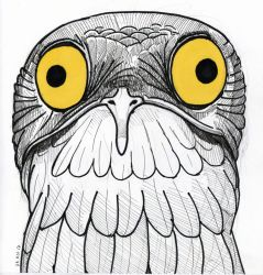 Inktober Day 23 - Potoo by Hituro