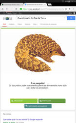 I'm an pangolin? by Tracy4angel