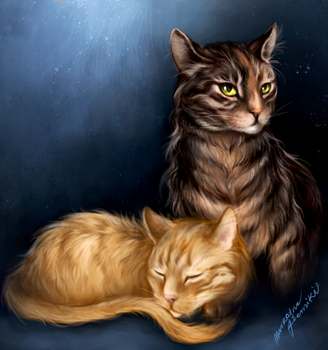 Cats in the dark: Wednesday and Cheddar by MarkotnePierniki