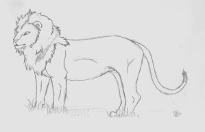 Earth Lion Sketch by AbyssinalPhantom