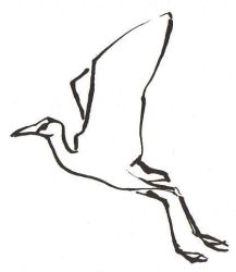 Jacana by SophieNeville