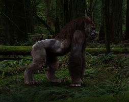 Realistic Lycanthrope v1 by H-M-M