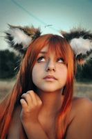 Horo-Spice and wolf 07 by Cra-zy-Frog