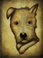 The rebirth of 'Dog' by scadias