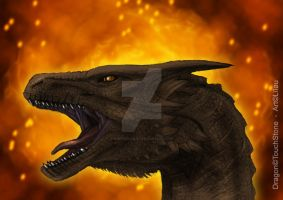 Reign of Fire by Captain-Lilou