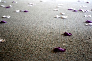The walkway to heaven is carpeted by Refreshing-Refrain