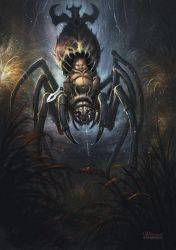 Baby-spider by no1hellangle