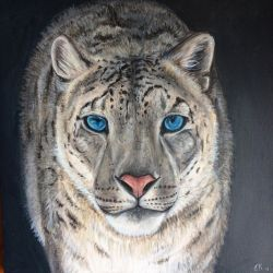 snow leopard by Emmagro