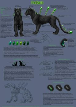 Podcat Species Sheet 1 of 2 by Bear-hybrid