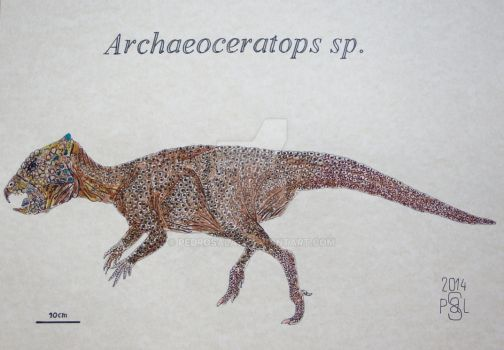 Archaeoceratops sp.