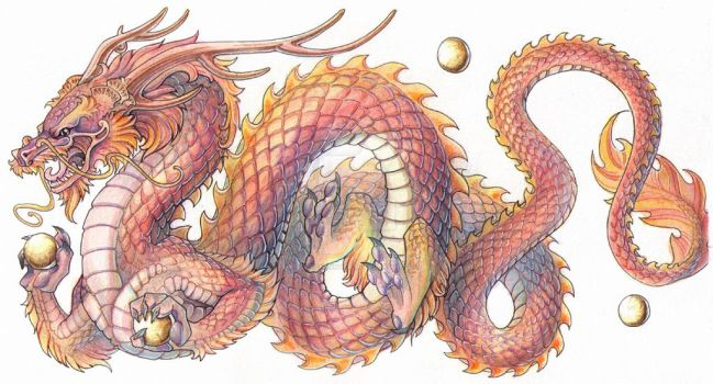 Commission - Chinese Dragon by drachenmagier