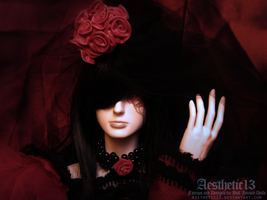 The 7th Rose X by aesthetic13