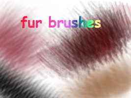 Fur brushes by xXmoonXx44