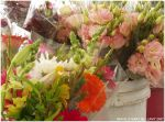 Market Place Flowers 2 by zorichan