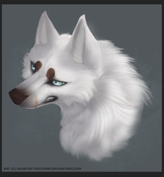 Northfrost Commission by HeartOfTheStorm