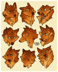 Rihla expressions by CanisAlbus