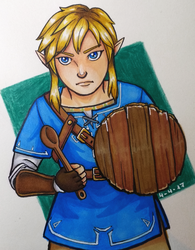 Link and the kitchen utensils by Ekkusuinetto
