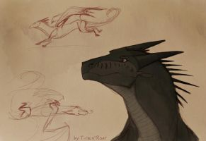 Morrowseer and some nightwings sketches by T-rexRoar