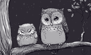 Owls by hirokiro
