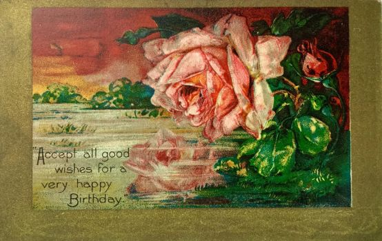 Rosy Reflections by Yesterdays-Paper