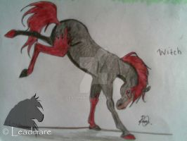 Witch for horsefreak654w by Leadmare