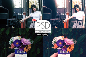 PSD Coloring 017 by vesaspring
