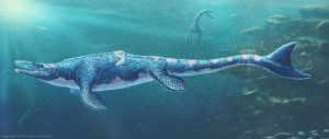 Tylosaurus Pembinensis Restored by TheDragonofDoom