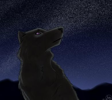 Shadow In The Night Sky by MariannaNight