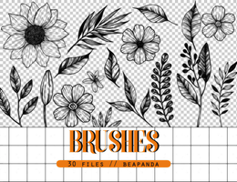 Brushes 006 // Floral by BEAPANDA