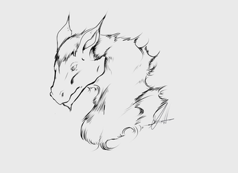 Dragon Bust Doodle by tstroyerfosho