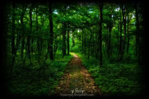 Mystic Forest #7 by reznor666