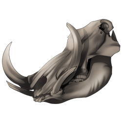 Large Animal Skull - 100 Crystals by The-Below