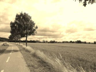 From The Road by enelam