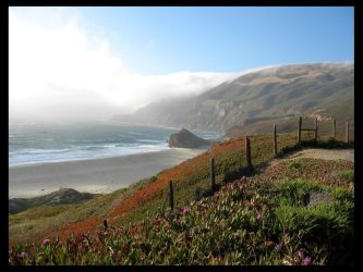 Highway One 08, Two by jl