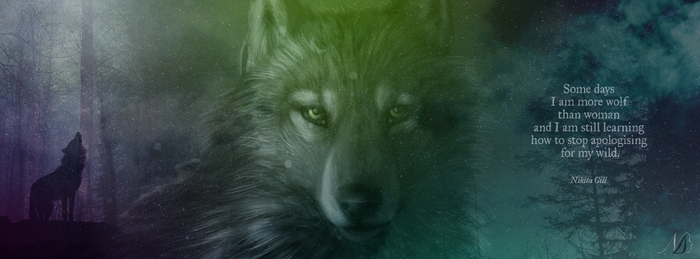 Facebook Cover - Wolf by noema-13