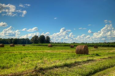 Partly Cloudy with Hay Bales by KaleyObsidia