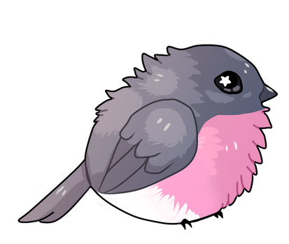 Pink robin by EverlastingDerp