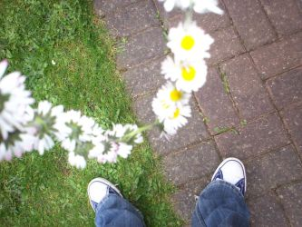 Daisy chain 1 by Holsmetree